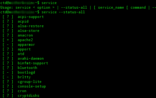 Linux terminal displaying services