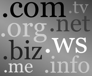 Whois search for TLDs, domain names and IPs