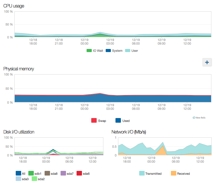 NewRelic server monitoring overview